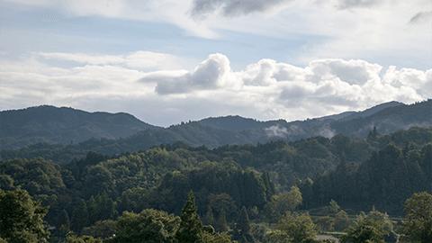 横田ヴィンヤードから望む船通山