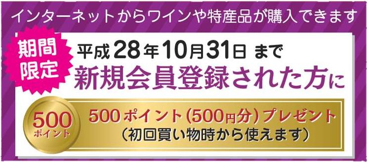 [バナー]期間限定!(平成28年10月31日まで)オンラインショップの新規会員登録された方に500ポイント(500円分)プレゼント