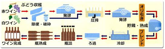 [画像]ワインの製造工程
