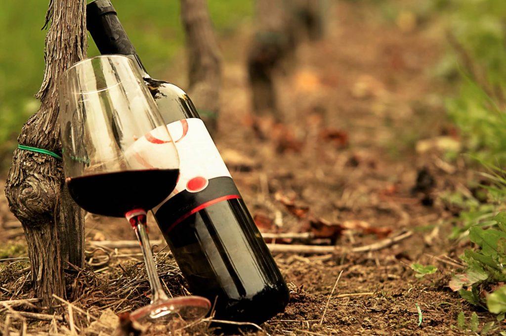 土壌とワイン